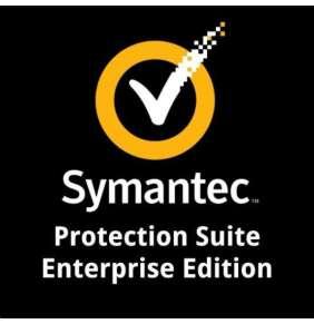 Protection Suite Enterprise Edition, Initial Software Main., 100-249 DEV 1 YR