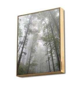 ENERGY Frame Speaker Forest, Výkonný reproduktor zasazený do exkluzivního plátna s dřevěným rámem