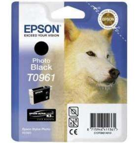 EPSON SP R2880 Photo Black (T0961)