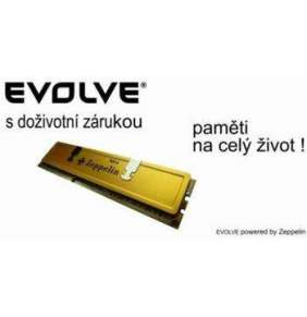 EVOLVEO Zeppelin, 4GB 1600MHz DDR3 CL11, GOLD, box (2x2GB KIT)
