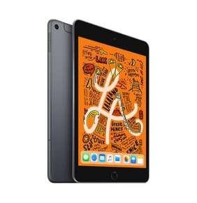 iPad mini Wi-Fi + Cellular 256GB Space Gray